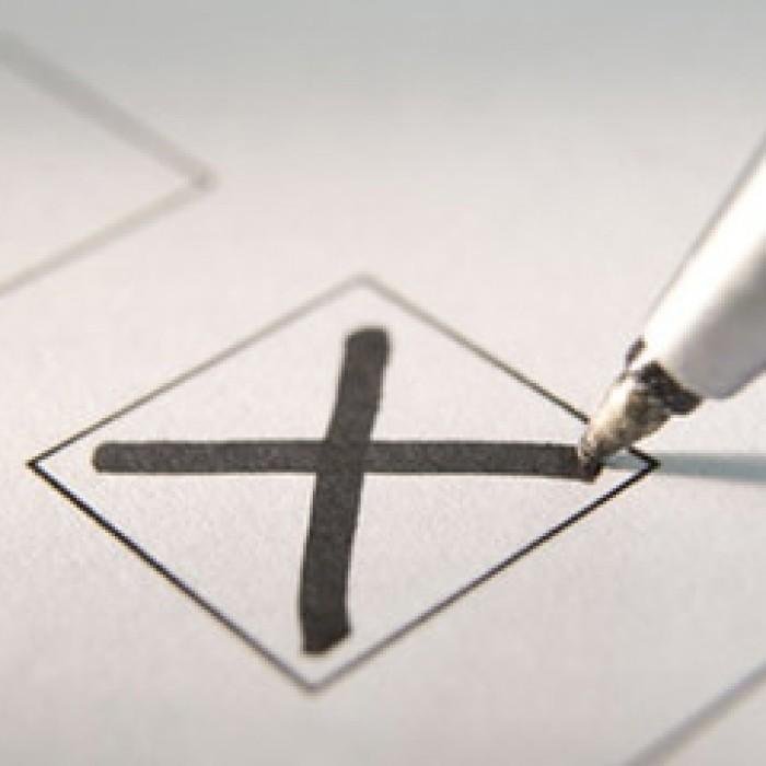 Népszavazás